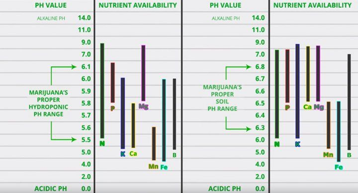 pH ranges for best nutrition uptake