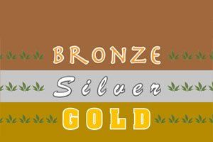 What Does Our Bronze, Silver and Gold Line Stand For?