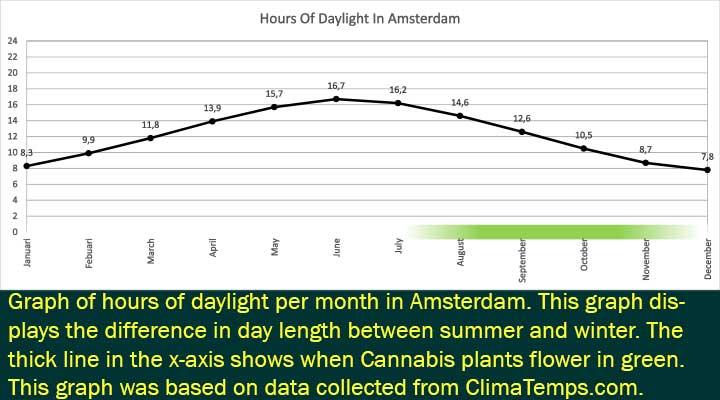 Godziny światła dziennego w Amsterdamie