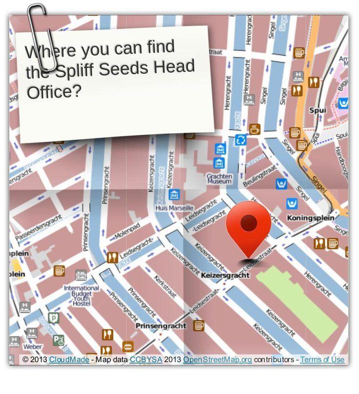 kaart spliff seeds cannabis seeds shop