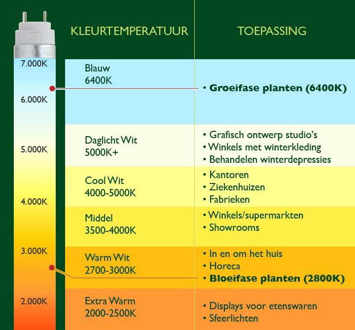 Beste Kleurtemperatuur Voor Wiet Kweken