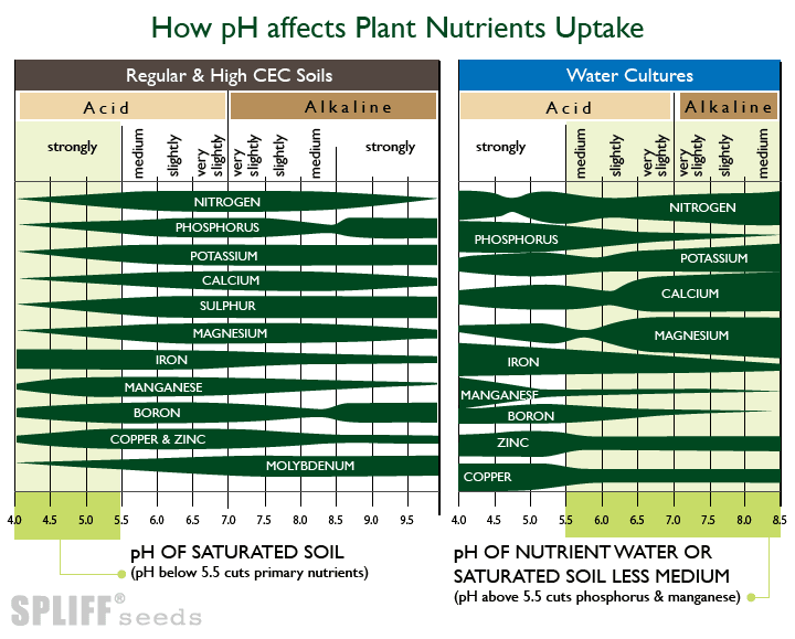 Nutrient solubility for growing medical marijuana