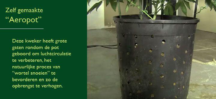 Wiet Kweken Buiten In Zelfgemaakte Aeropots