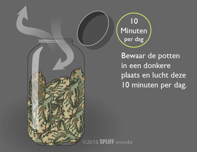 Drying cannabis in jar